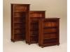 Woodbury Bookcase-CV