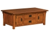 Camden Cabinet Coffee Table-IH