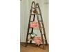 1357-Showcase Ladder-HH